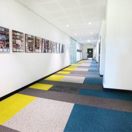 carpets-online-9-min